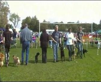 Glenrothes Gals 2011 - Obedience Class